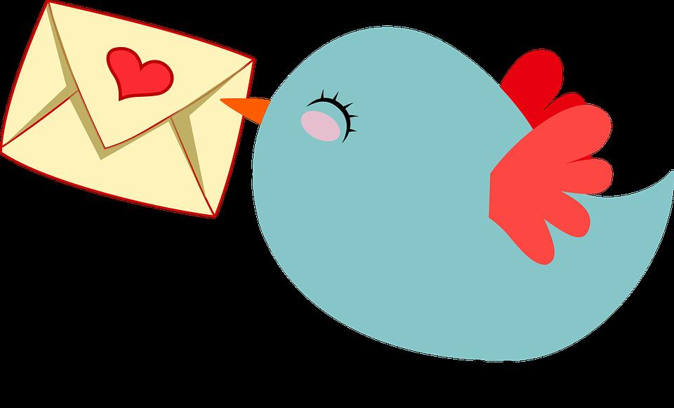 Informations de livraison concernant les commandes