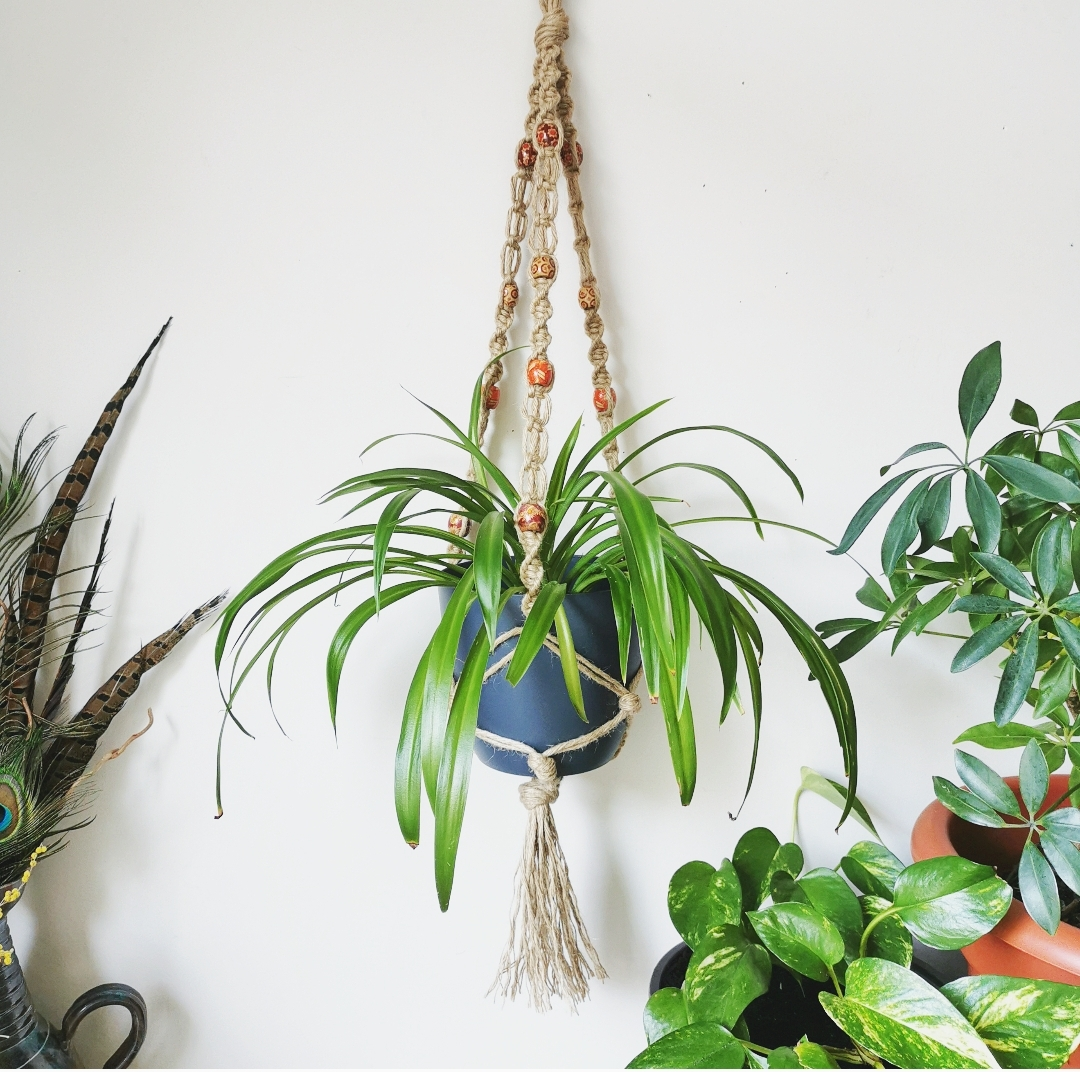 Suspension pour plante pot en macramé, création artisanale, fait main en France, décoration intérieur bohème